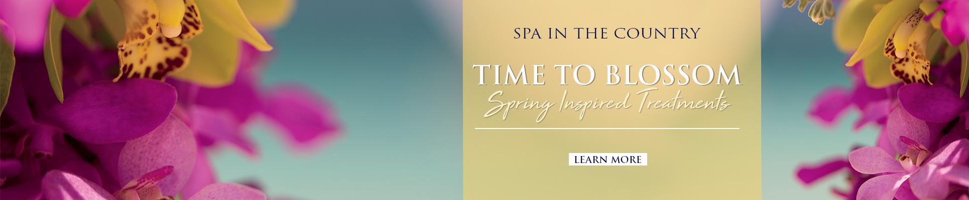 Spa Spring Special